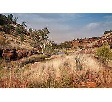 Tupul landscape, central Australia Photographic Print