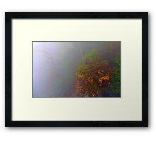 Misty Autumn Framed Print