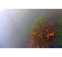 Misty Autumn Photographic Print
