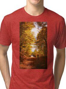 Autumn's Colors Tri-blend T-Shirt