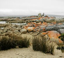 Binalong Bay Landscape, Tasmania, Australia. by kaysharp