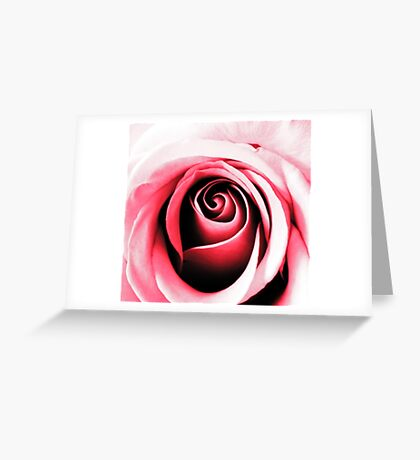 Contours of Pink Greeting Card