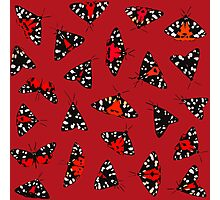 Scarlet Tigers - Red Photographic Print