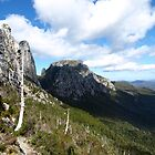 Tasmanian Wilderness by HildaJorgensen