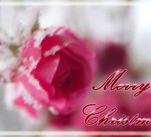 Greeting Card: Pink Ice by Katharina Vasicek