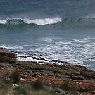 waves at Nettle Bay - far nw Tasmania  by gaylene