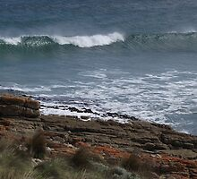 waves at Nettle Bay - far nw Tasmania  by gaylene