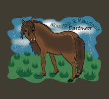 Mountain & Moorland: Dartmoor Pony by Diana-Lee Saville