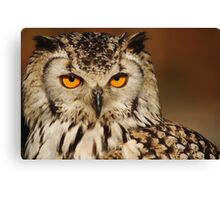 Disney the Orange Eyed Owl Canvas Print
