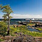 A Windy Archipelago by Niko Mönkkönen