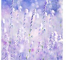 Pastel Dreams II iPhone Case by Adriana Glackin