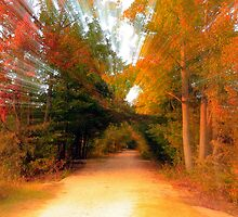 Zooming Through Fall by JGetsinger