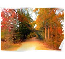Zooming Through Fall Poster