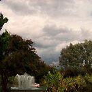 Stormy Weather by Rachel Williams