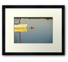 Beautiful Reflection Framed Print
