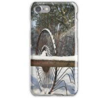 Winter at Holme Green iPhone Case/Skin