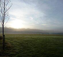 Winter Meadow Dawn 1 by Adrian S. Lock