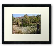 Fence Framed Print