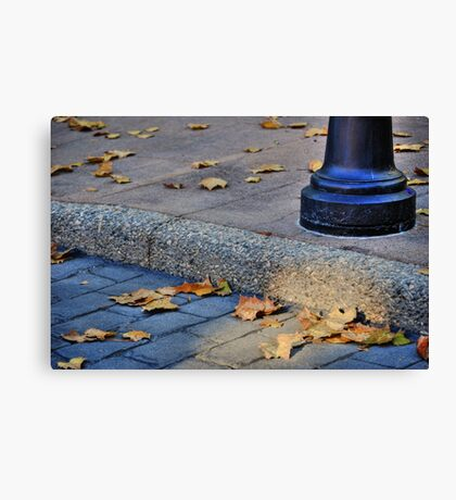 Last Gasp of Autumn Canvas Print