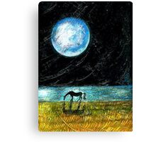 Fool Moon and a Horse Canvas Print