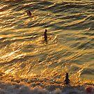 Playing in an ocean of gold - jugando en un oceanó de oro, Puerto Vallarta, Mexico by PtoVallartaMex