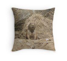 Groundhog  Throw Pillow