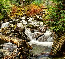 Cool Pure Waters Cascading Down by Dale Lockwood