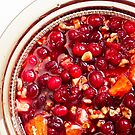 Thanksgiving Homemade Cranberry Sauce by andymars