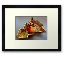 An apple for Christmas Framed Print