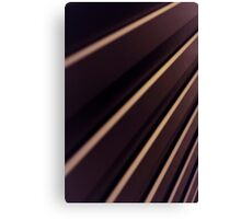 Spiral Lines : abstract Canvas Print