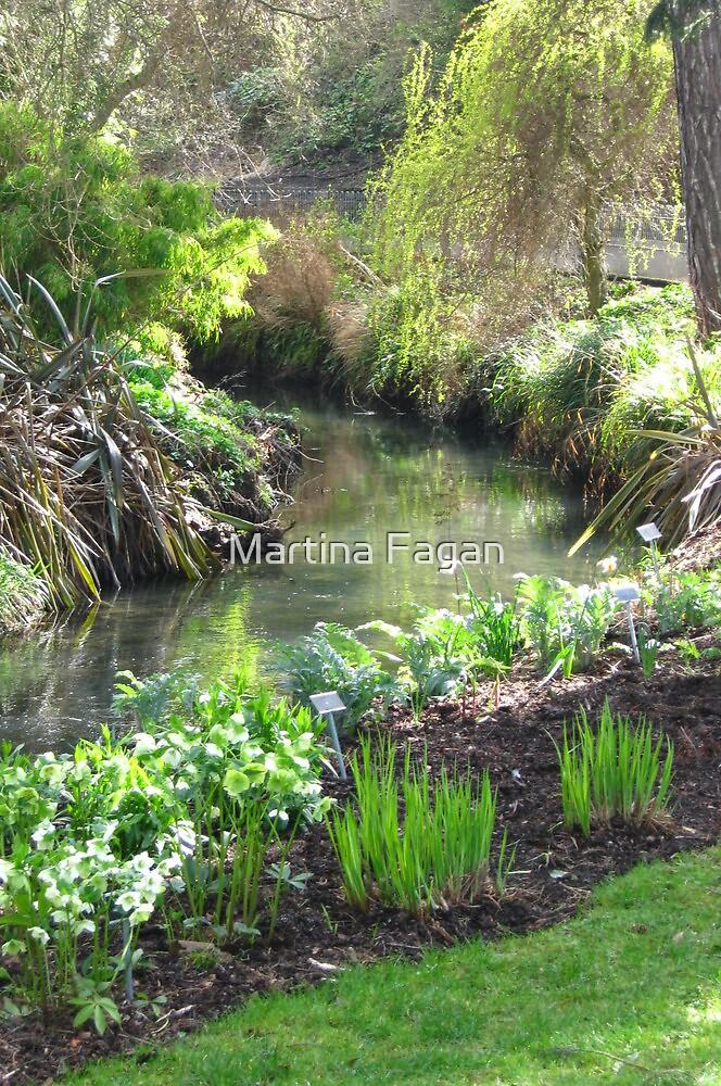 A Green & Peaceful Place by Martina Fagan