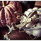 Pumpkin and Vine by Barbara Wyeth