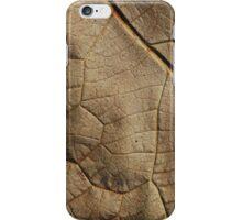 leaf 2 iPhone Case/Skin