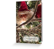 Jolly Santa Claus Tree Ornament - Christmas Trimmings w/ Red Xmas Balls, Lights & Frosted Branch Garland  Greeting Card