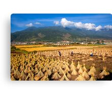 High Altitude Farming Canvas Print