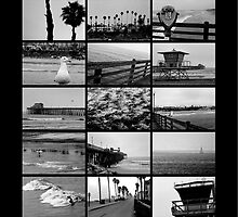 Oceanside Beach Collage by Donovan Olson