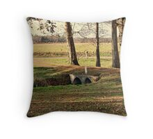 The Starkness of Cold Weather Throw Pillow