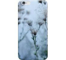 flowers and seeds of thistle iPhone Case/Skin
