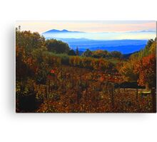 View From The Glen Canvas Print
