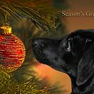 My first Christmas by cards4U