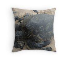 Tortoise on Maui Throw Pillow