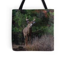 The King is Dead...Long Live the King - White-tailed Deer Tote Bag