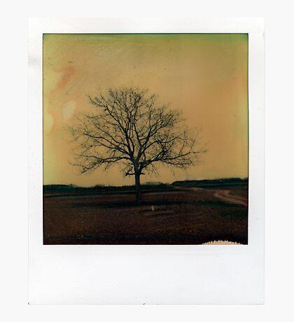 far away Photographic Print