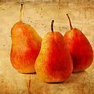 Golden Pears by KathyT