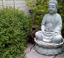 Buddha Cat by Melissa DeBusk
