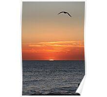 Gulf Coast Sunset Poster
