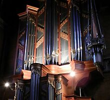 the voice of Trinity Cathedral by WonderlandGlass