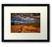 Log Roll Framed Print