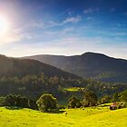 The Green Behind the Gold - Numinbah Valley Panorama by Maxwell Campbell