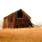 Old Barn On A Hill by SuddenJim